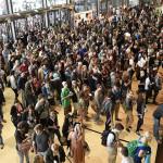 Jedes Jahr bricht der MedAT neue Teilnehmerrekorde. Auch in Graz strömen jedes Jahr tausende Medizin-Begeisterte in die Test-Hallen.